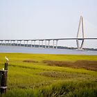 Arthur Ravenel Jr. Bridge Scenic  by Peter Van Egmond