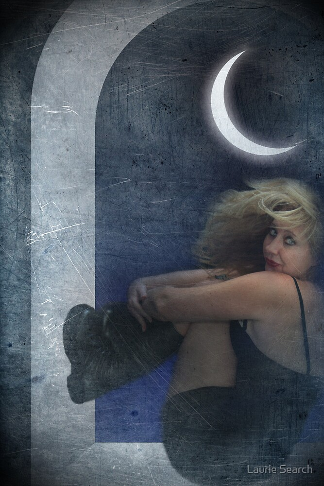 Blame It On The Moon by Laurie Search