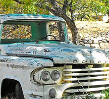 Retired Dodge by VisionsbyCheryl