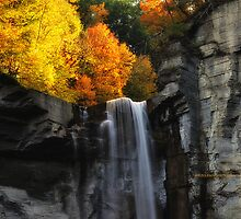 New York's Taughannock falls VII by PJS15204