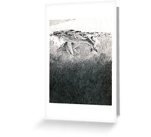 Humpbacks - surfacing Greeting Card