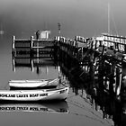 Highland Lakes Boat Hire by thorpey
