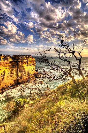 Windswept - The Twelve Apostles - The Great Ocean Road - The HDR Experience by Philip Johnson
