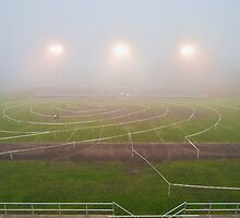 Foggy Cycling Maze by JKunnen