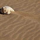Crawling Stone by PhotoWorks