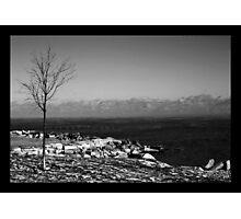Dead Cold Photographic Print
