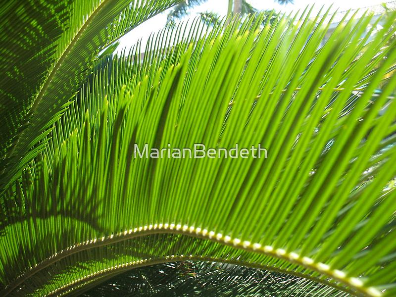 Fandango Green by MarianBendeth