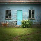 A Blue House by JenniferElysse