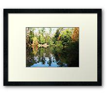 Reflection... Framed Print
