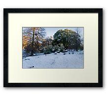Tropical Snows Framed Print