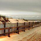 Ocean City by ALEX CENTRELLA