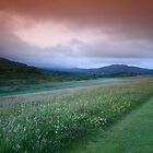 Derrynane Long Beach  Wild Meadow by highonsnow