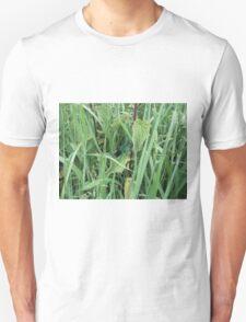 common blue 2 Unisex T-Shirt