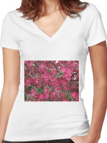Pink flowers of apple Women's Fitted V-Neck T-Shirt