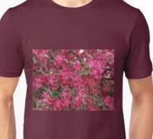 Pink flowers of apple Unisex T-Shirt