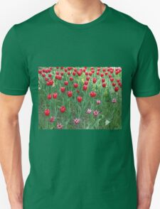 A large bed of red tulips T-Shirt