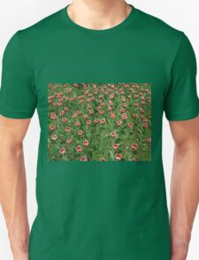 Large field of tulips T-Shirt