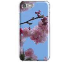 Blossom against a blue sky iPhone Case/Skin