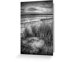 The grassy knoll at Apollo Bay in monochrome Greeting Card