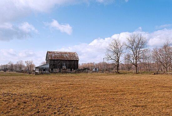 Rusty Old Barn by ediaz