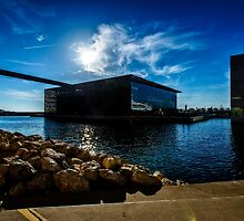 Silhouette of Mucem in the evening sun, Marseille by MarcW