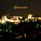 The Alhambra in Granada, Spain by John McNamara