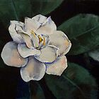 Gardenia Oil Painting by Michael Creese