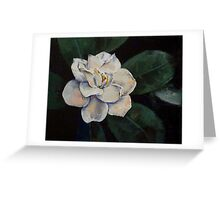 Gardenia Oil Painting Greeting Card