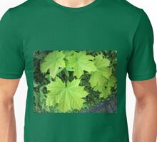 Leaves of a young maple tree on the background of a bush Unisex T-Shirt