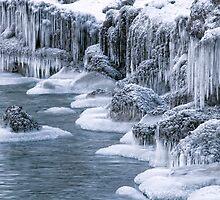 Winter Wonderland by ediaz