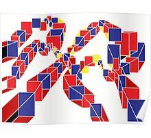 Journey thru Cube Poster