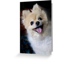 Bright -Eyed and Bushy-Tailed Greeting Card