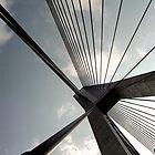 Anzac Bridge #1 by Elizabeth McPhee