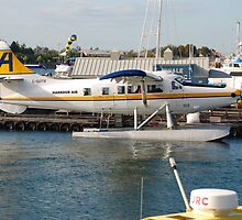 Harbour Air deHavilland DHC-3 Otter > by John Schneider