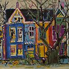 The Colourful House by Donald  David