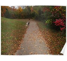A Little Walkway in Fall Poster