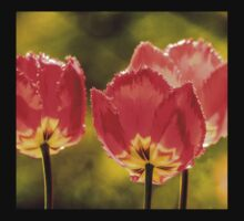 Glowing Red Tulips Kids Clothes