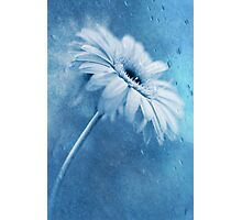 Blue Dancer Photographic Print