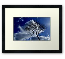 brush strokes! Framed Print