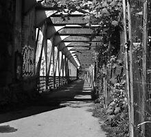 Bristol Bridge by clivester