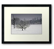 It's Snowing!!! Framed Print