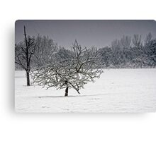 It's Snowing!!! Canvas Print