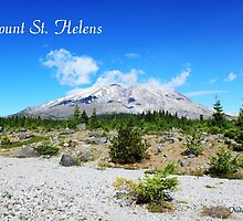 Mount St. Helens. National Park near Seattle, U.S.A.  by naturematters