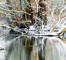 River Winter by CJTill