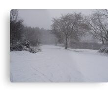 wintry scene Metal Print