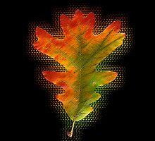 White Oak Leaf by Susan Elizabeth Dalton