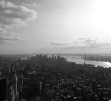 Towering over NYC by apricotargante
