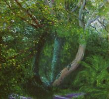 Dappled Light, Killynether Wood by Les Sharpe