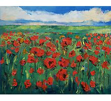 Field of Red Poppies Photographic Print