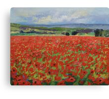 Red Oriental Poppies Canvas Print